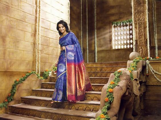 Trisha in Samudrika Pattu Sarees