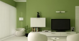 Unique-Mood-Enhancing-Living-room-wall-green