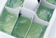 aloe vera-ice-cube-tray_300