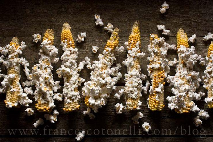 Popcorn on Cob-francesco-tonelli-food-photography