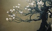 bonsai-flower-plants-for-interiors